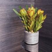 papier-peint-elitis-luxury-walls-paille-japonaise-rm-402