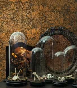 Wallpaper Khrôma Cabinet of Curiosities Sauvage CAB 301-305