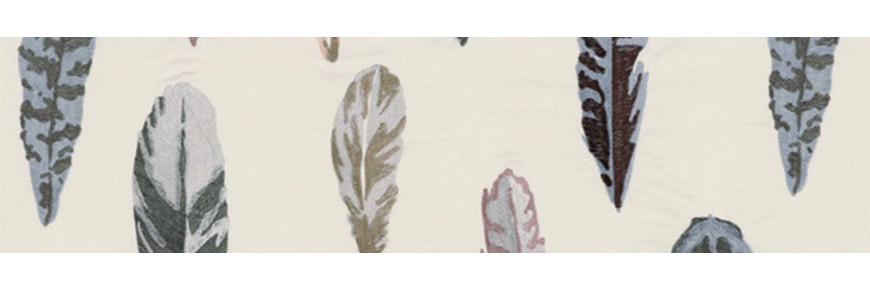 Feathers Casamance
